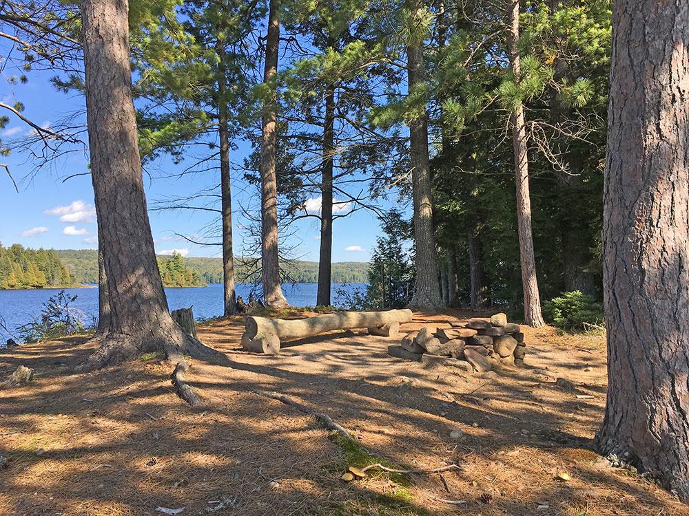 Burntroot Lake Campsite #12 interior of the site