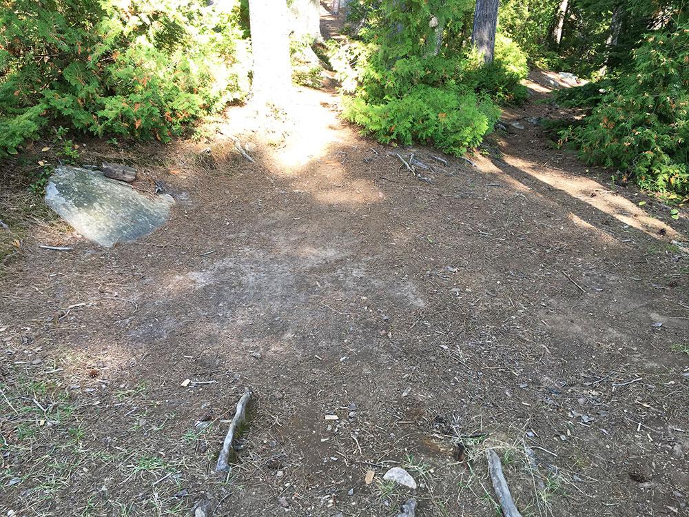 Burntroot Lake Campsite #14 flat tent spot