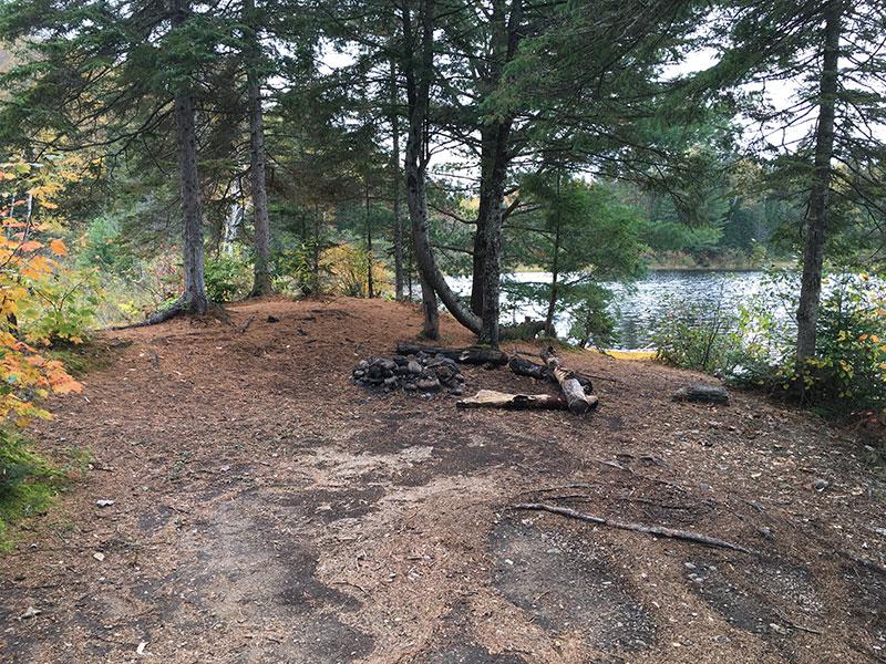 Byers Lake campsite #2 interior of campsite