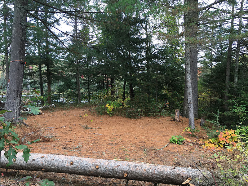 Byers Lake campsite #2 tent spot area
