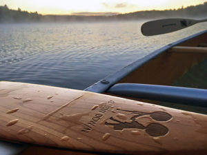 Close up zoom in of my canoe paddle on David Lake