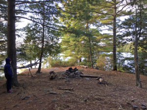 Fire pit and seating on northern campsite on Clydegale Lake