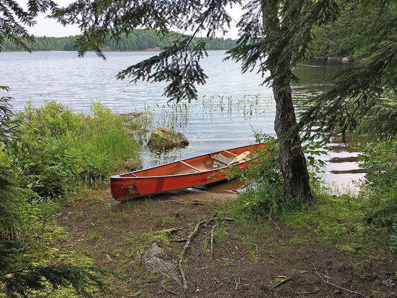 Clydegale Lake Campsite #5 canoe landing