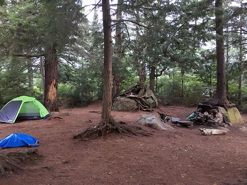 The interior of the island campsite on David Lake in Algonquin