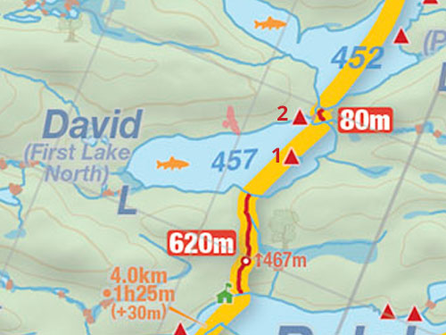 Map of David Lake campsites in Algonquin Park
