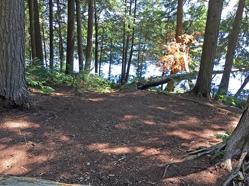 Little Trout Lake Campsite #1 tent spot area