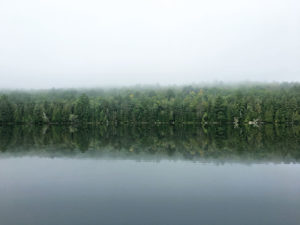 Tree shorelines reflecting on water during a foggy morning on Sunday Lake