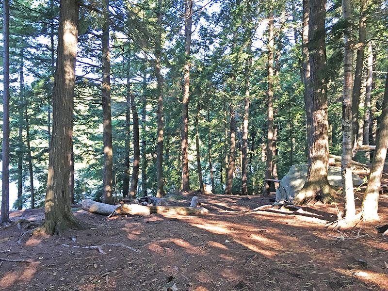 Pen Lake campsite #13 interior of campsite