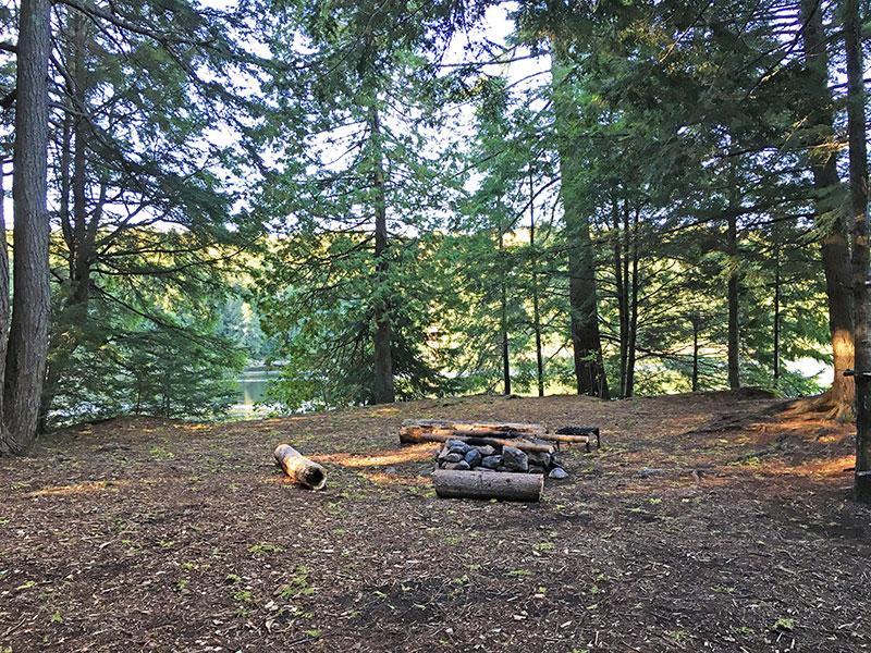 Pen Lake campsite #14 interior of the campsite