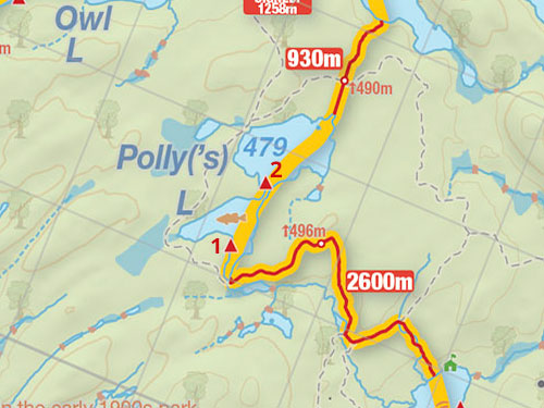 Map of Polly Lake campsites in Algonquin Park