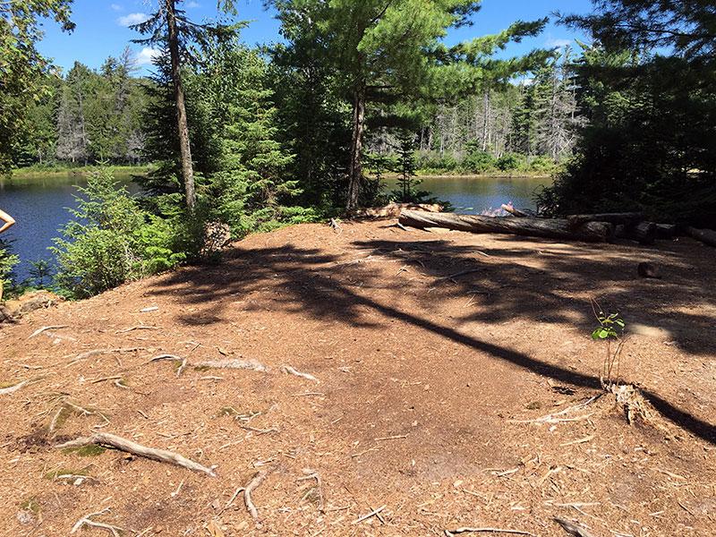 Queer Lake campsite #12 interior of the campsite