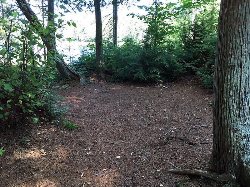 Queer Lake campsite #12 flat tent spot area