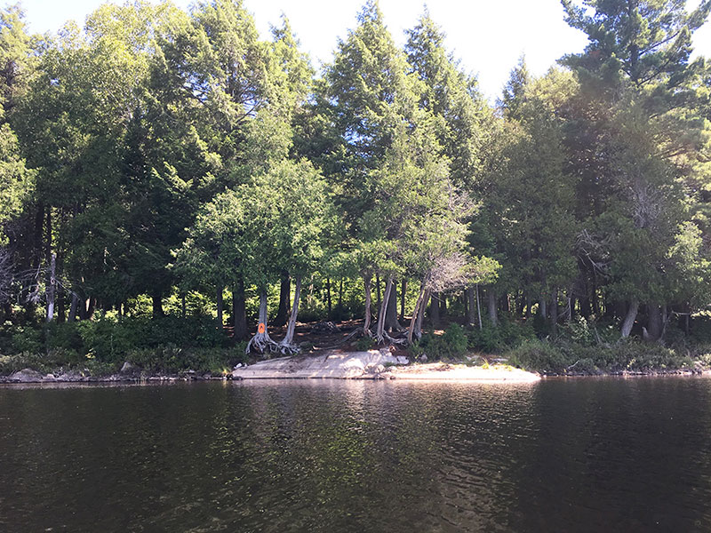 Queer Lake campsite #5 view of the campsite from the water
