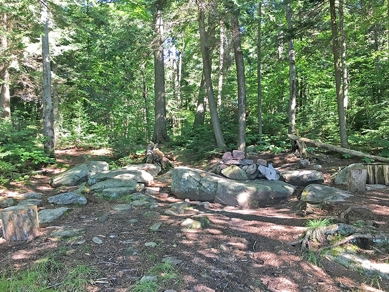 Ralph Bice Lake campsite #2 interior of campsite