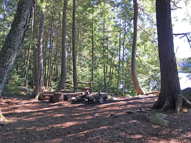 Ralph Bice Lake campsite #3 campsite interior