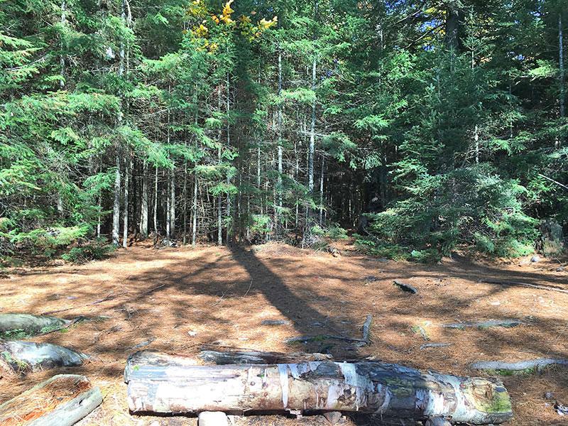 Scorch Lake campsite #2 flat tent spot area