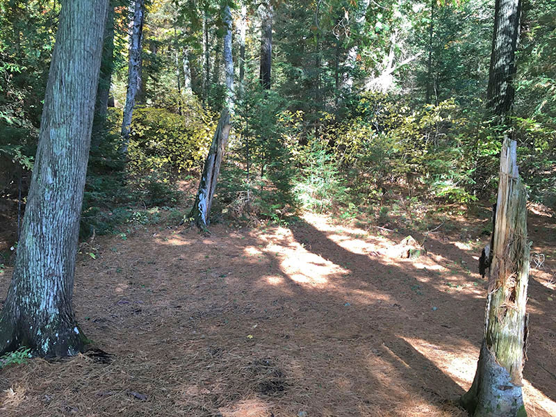 Scorch Lake campsite #3 tent spot area