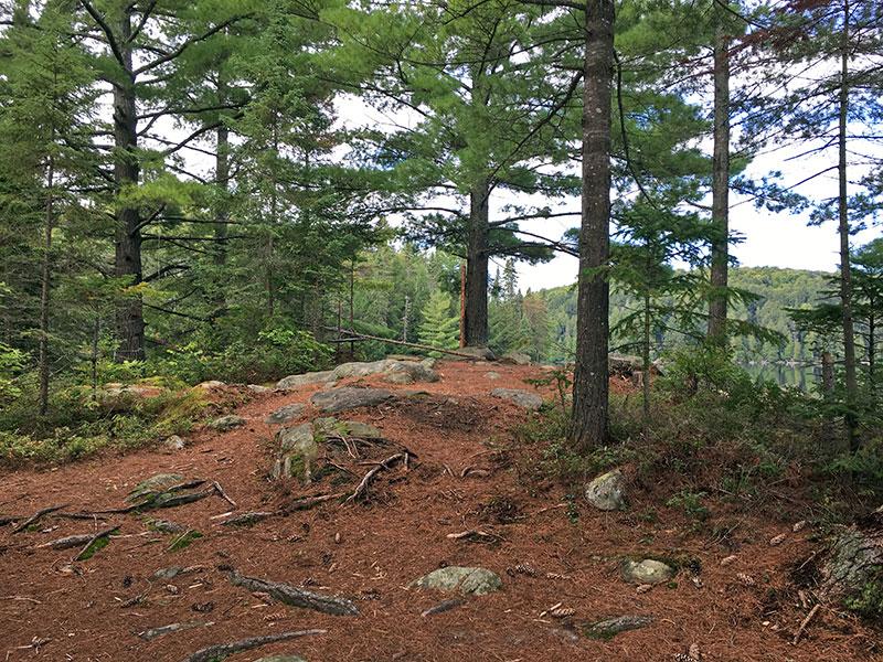 Sproule Lake Campsite #2 interior of campsite