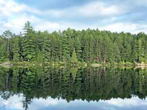 Gorgeous green trees reflecting on calm waters of Sproule Lake in Algonquin