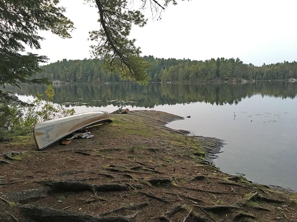 Sunbeam Lake campsite #7 canoe landing