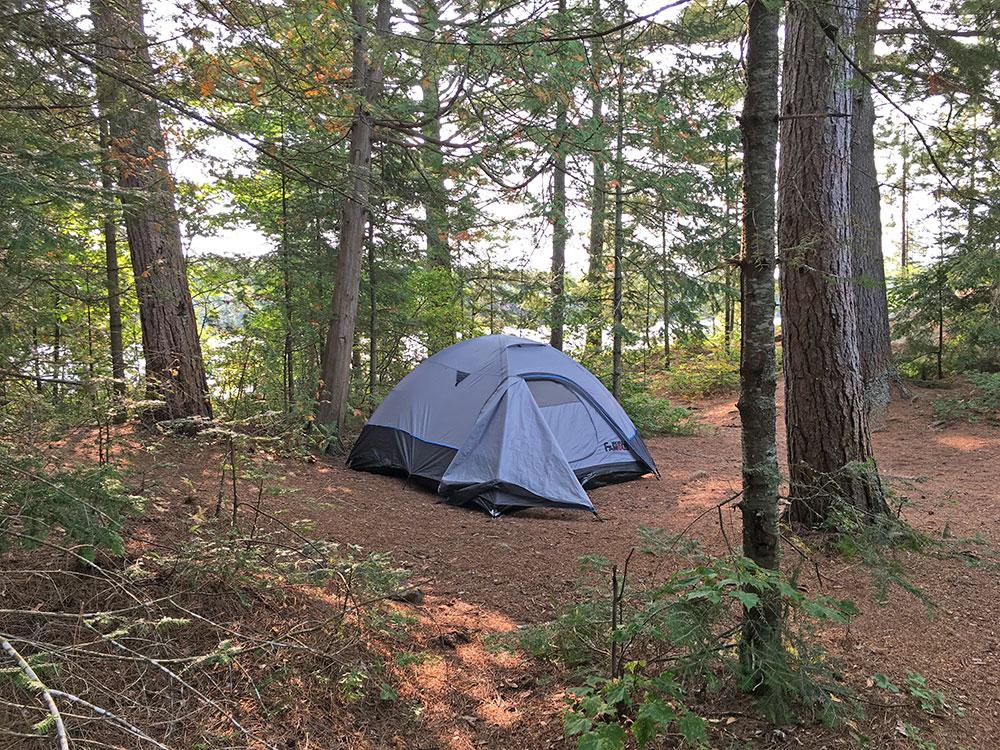 Sunbeam Lake campsite #7 flat tent spot