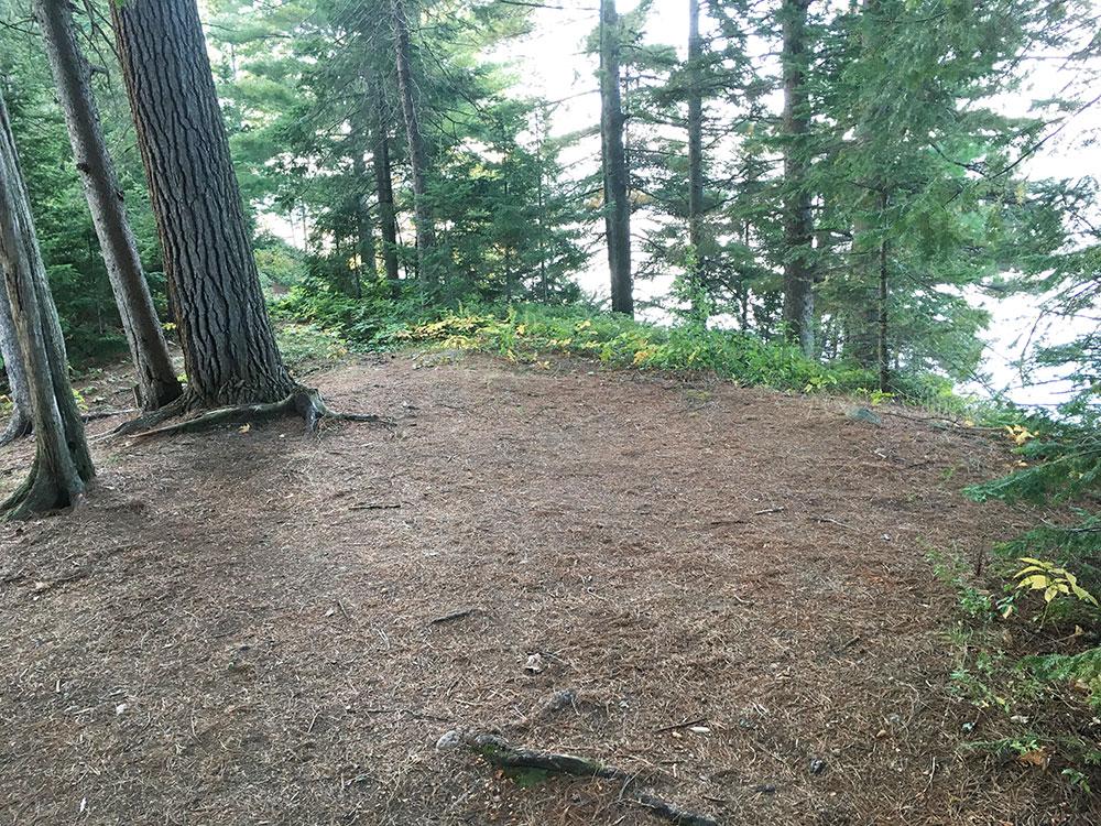 White Trout Lake Campsite #9 large open tent spot