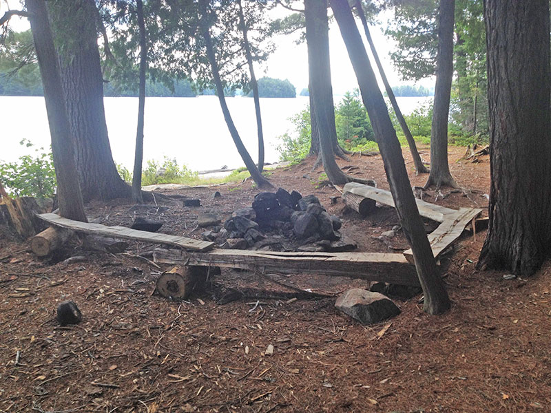 Lake Louisa campsite #1 fire pit and seating area