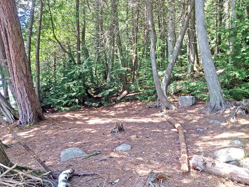 Lake Louisa campsite #2 tent spot