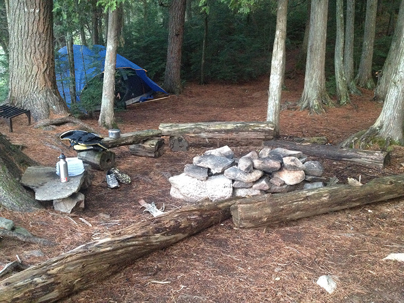 Lake Louisa Campsite #20 fire pit and seating area
