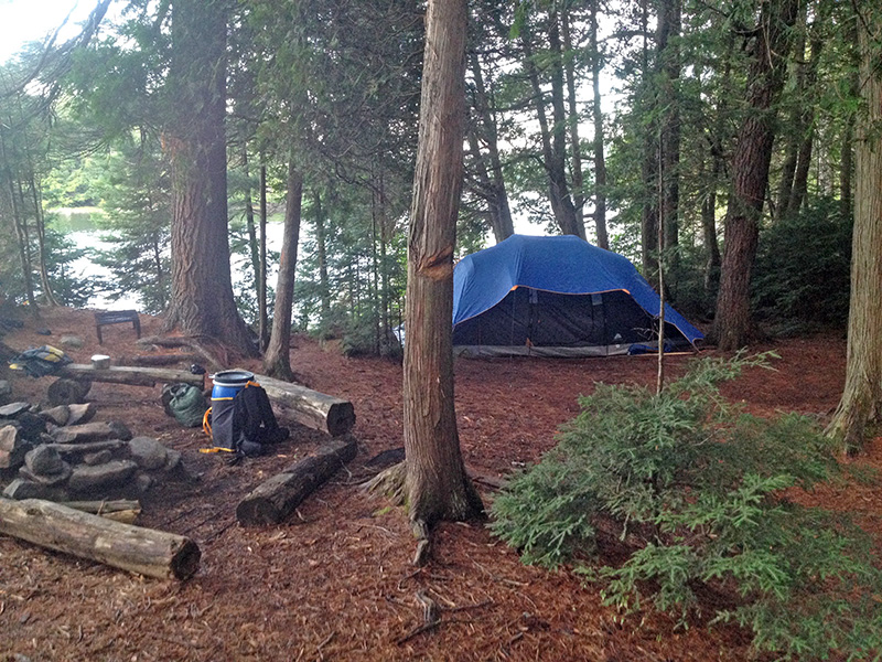 Lake Louisa Campsite #20 another tent spot