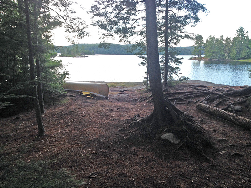 Lake Louisa Campsite #20 view out onto the water