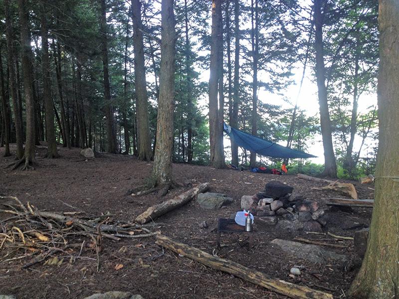 Welcome Lake campsite #4 interior of campsite