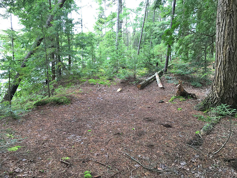 Bonnechere Lake campsite #4 large flat ground for tents