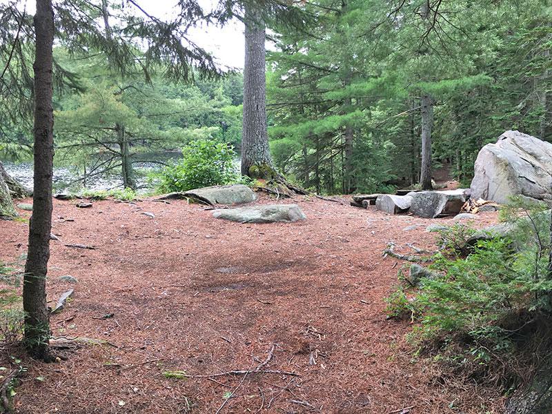 Bonnechere Lake campsite #6 interior of campsite with tent spot