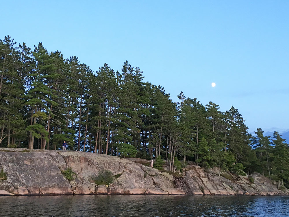 Closeup of the cliff shoreline from our campsite on Bonnechere Lake