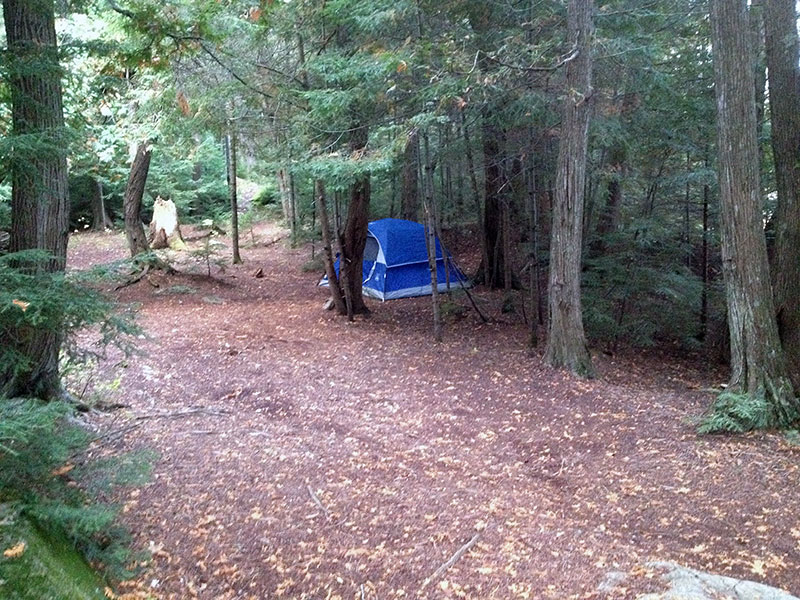 Harness Lake campsite #5 tent spots