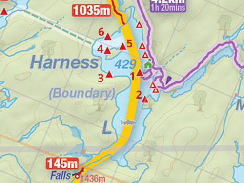 Map of Harness Lake campsites in Algonquin Park