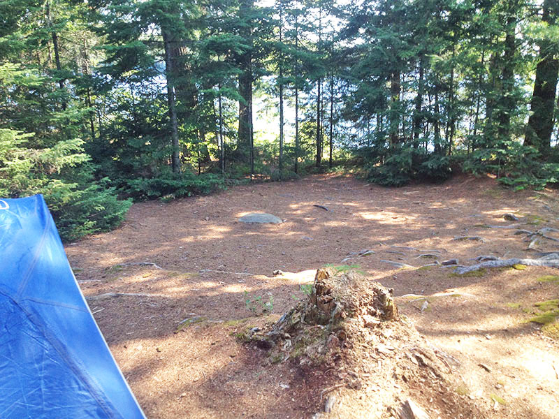 Linda Lake Campsite #1 in 2016, one of the tent spots