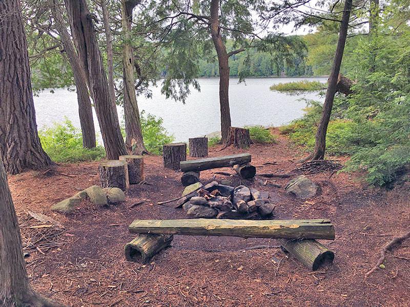 Pardee Lake campsite #2 interior of the campsite
