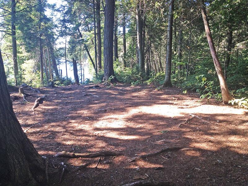 Raven Lake campsite #1 large tent spot