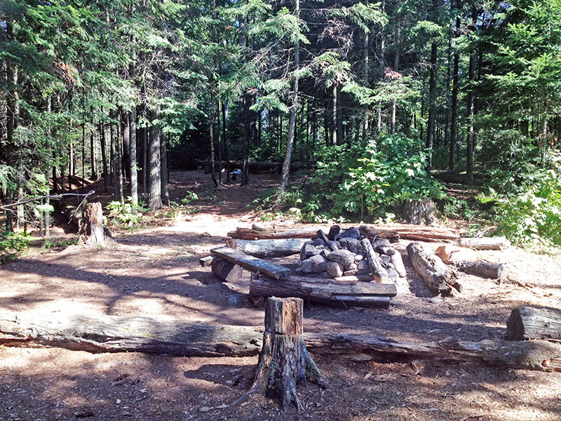 Raven Lake campsite #2 fire pit and seating area