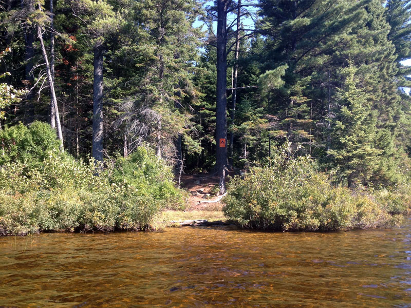 Raven Lake campsite #2 canoe landing