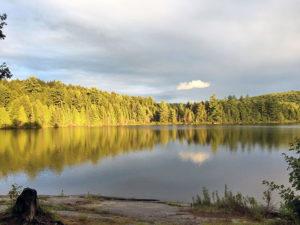 Sunshine hitting the tree shoreline on Pardee Lake after rainfall