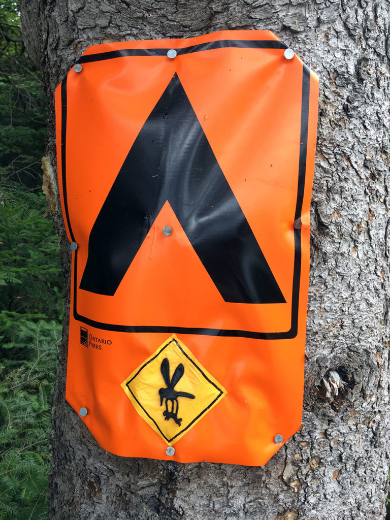 Orange campsite sign in Algonquin Park with yellow mosquito drawing