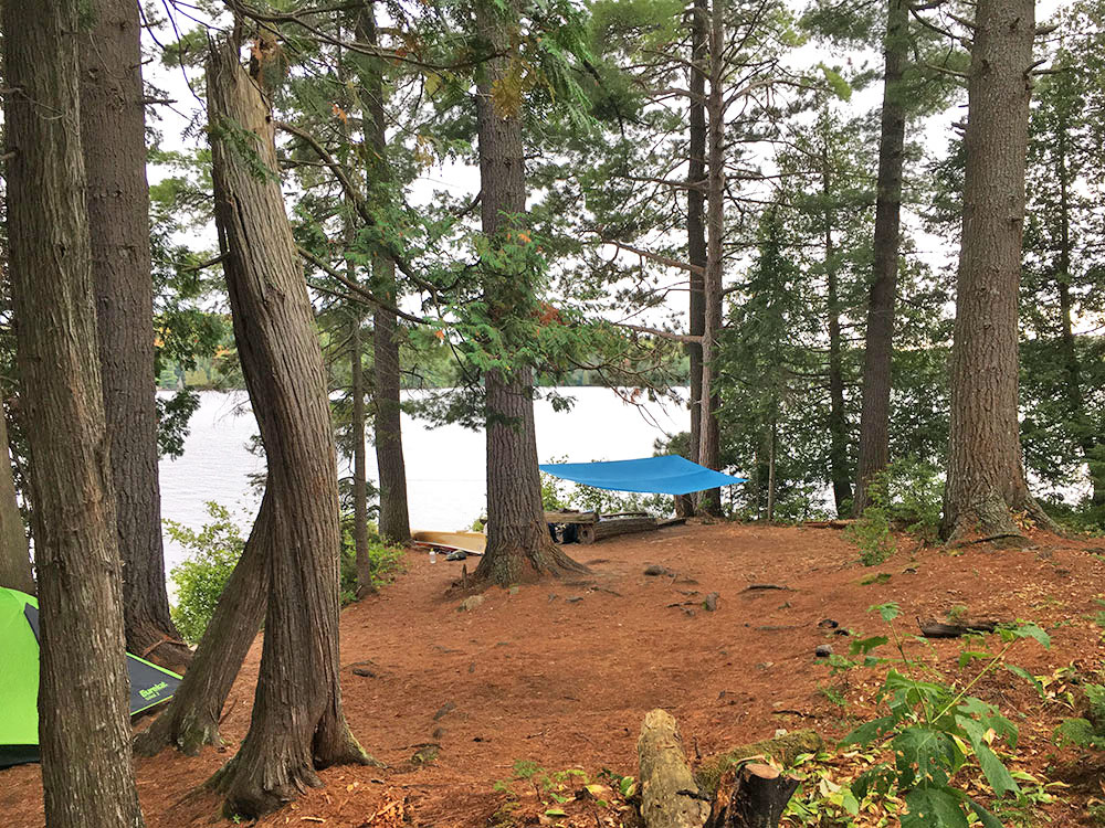 Interior of campsite #7 on White Trout Lake in Algonquin Park