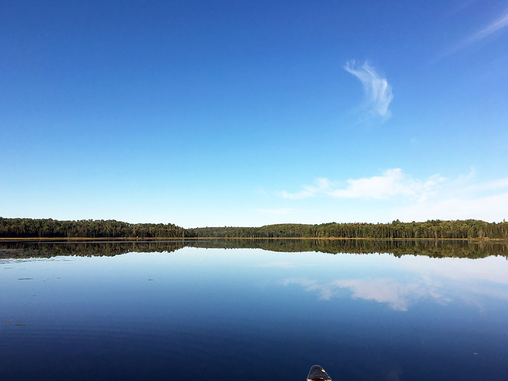 Calm waters on Grassy Bay in Algonquin Park