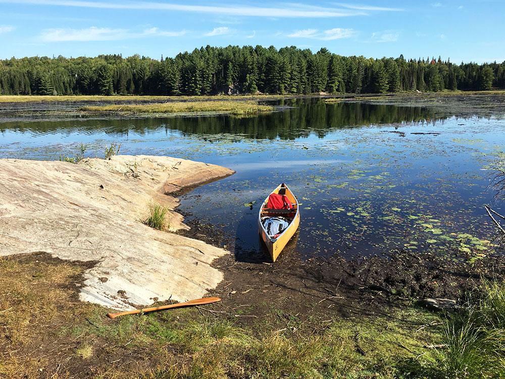 Canoe landing on Grassy Bay campsite #2