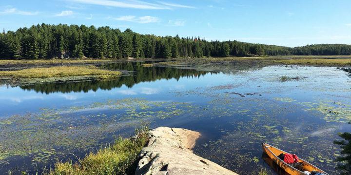 Grassy Bay – Campsite #2