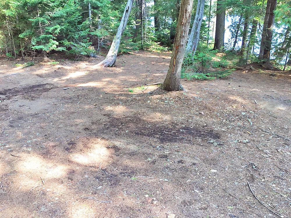 Tent spot area on McIntosh Lake campsite #10