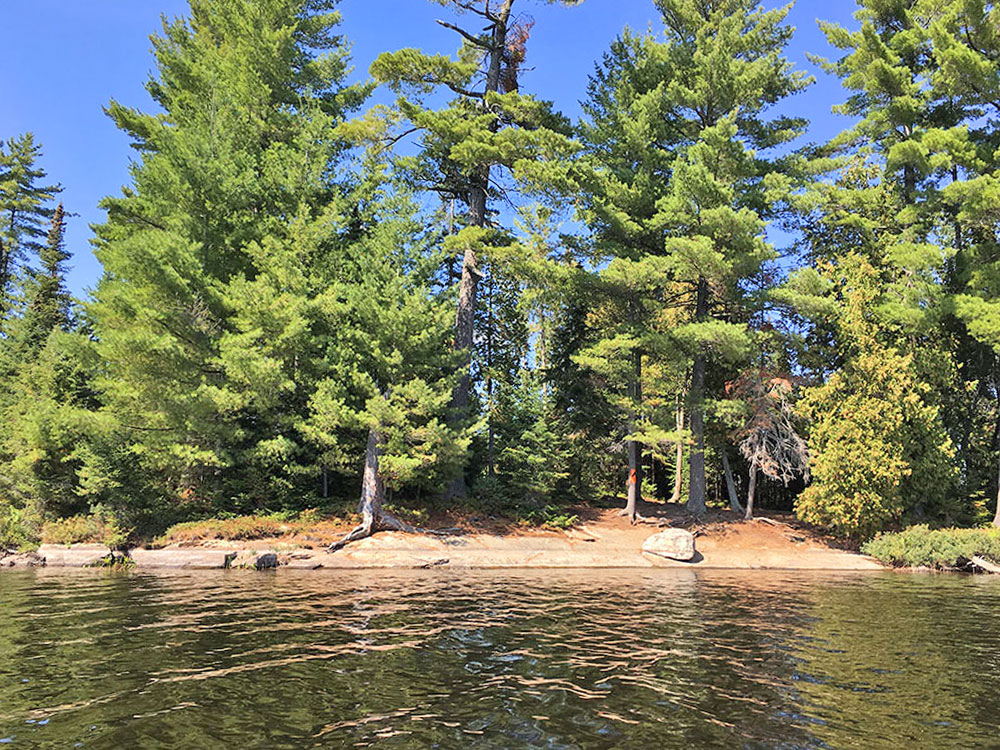 Looking at island campsite #10 on McIntosh Lake from the water